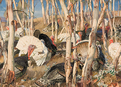 Hans Heysen, Bronzewings and sapling, 1921, watercolour on paper, 56.7 (h) x 76.4 (w) cm