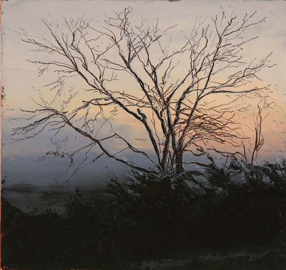 Phillip Wolfhagen, Past the dead wattle no. 1', 2009, oil & beeswax on linen, 46 x 49cm