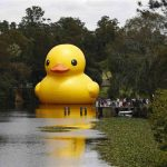 Florentijn Hofman, 'Rubber Duck', Parramatta  River, 2014