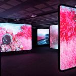 Richard Mosse, The Enclave (2012–13) 16mm infrared film transferred to HD video, 39:25 mins. Courtesy: The artist and Jack Shainman Gallery