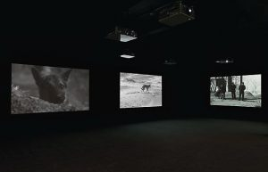 Installation View East of Que Village (Dog), 2007