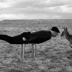 'Untitled-Murramarang Planck', 2014, Lucille Gladwell