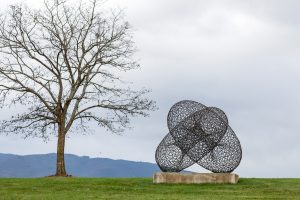 14.Bronwyn Oliver_Two Rings 2006_ with tree_Andrew  Curtis